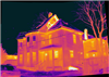 thermal scan image.png