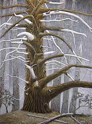 The Devil Tree Scratchboard