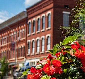 View of Downtown Amherst with brick buildings and flower planter containing red flowers